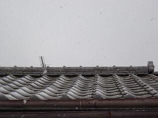 まさかの雪??_c0223192_20392900.jpg