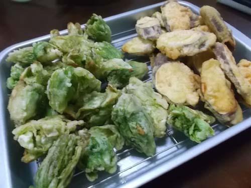 ふきのとうの天ぷら&まぐろの漬け丼_f0019498_19034450.jpg