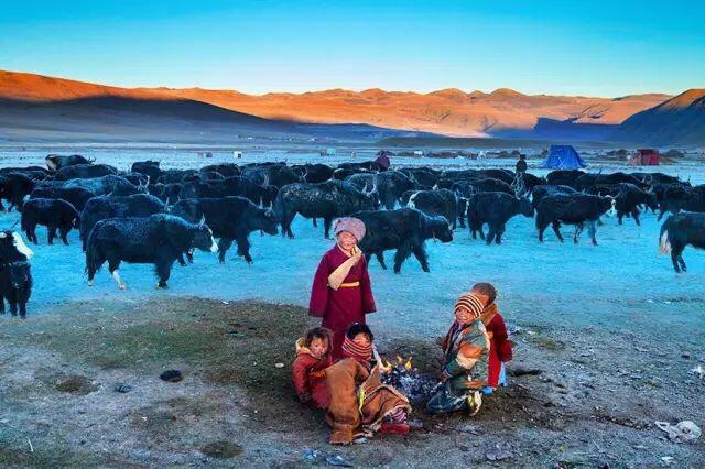 チベットからの便りです❗️_c0162404_11361396.jpg