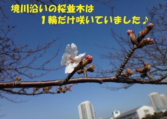 f0121712_08411677.jpg