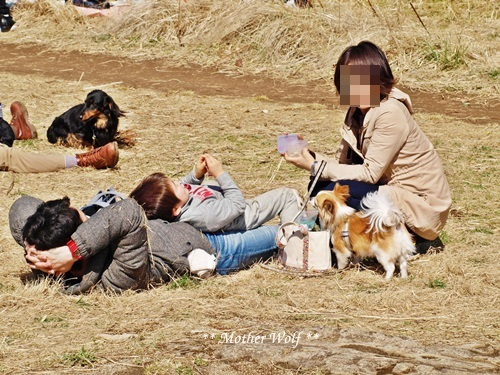 第24回マザーウルフ遠足 鎌倉天園レポート_e0191026_16440445.jpg