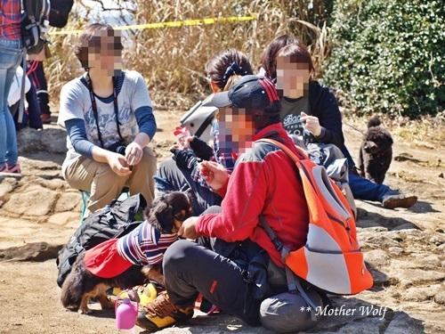 第24回マザーウルフ遠足 鎌倉天園レポート_e0191026_16472230.jpg