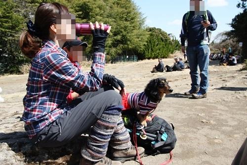 第24回マザーウルフ遠足 鎌倉天園レポート_e0191026_17275569.jpg