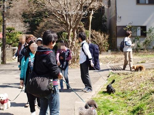 第24回マザーウルフ遠足 鎌倉天園レポート_e0191026_18494932.jpg
