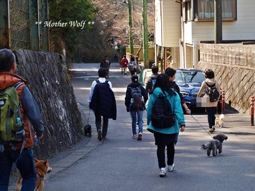 第24回マザーウルフ遠足 鎌倉天園レポート_e0191026_19070696.jpg