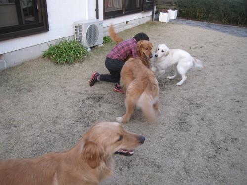 ゴーちゃんとあっちゃんとジョジョさん_e0350927_09554121.jpg