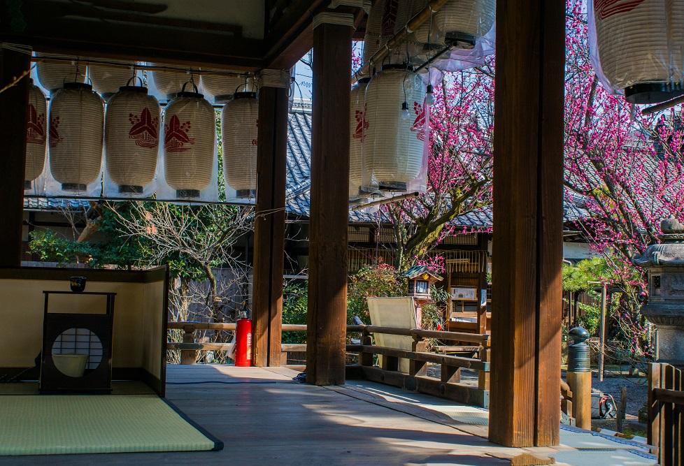 下御霊神社の梅_e0363038_203124100.jpg