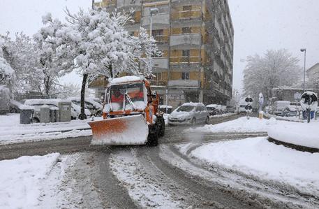 昨日は雪が降りました_b0305039_20193306.jpg
