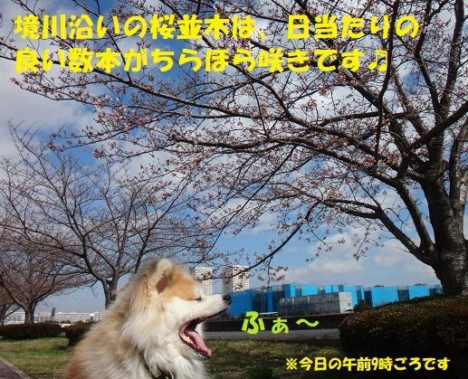f0121712_14320855.jpg
