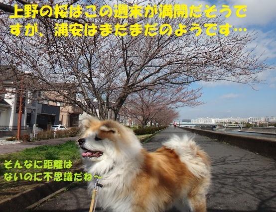 f0121712_14321475.jpg