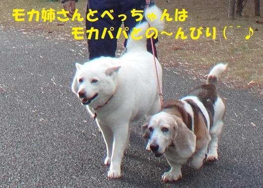 f0121712_14540879.jpg