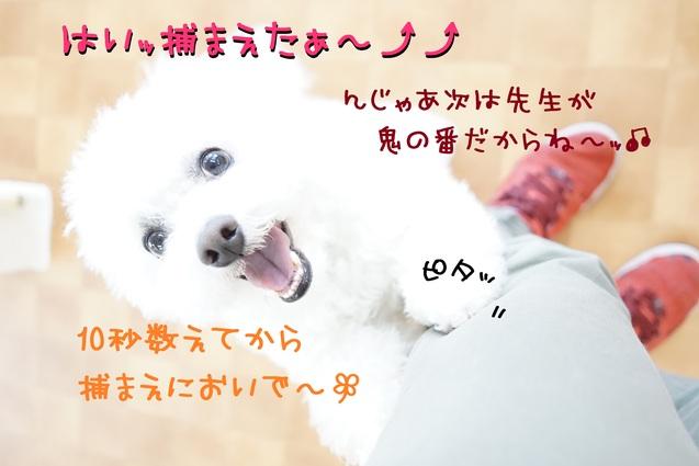 d0220513_1619714.jpg