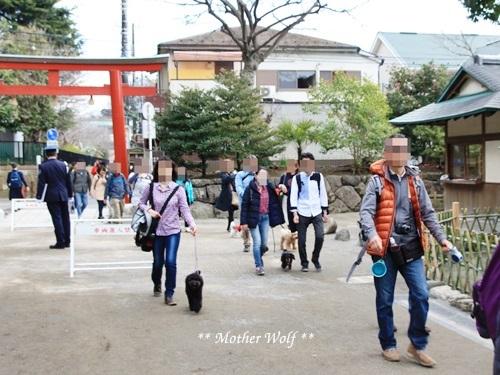 第24回マザーウルフ遠足 鎌倉天園レポート_e0191026_19463153.jpg