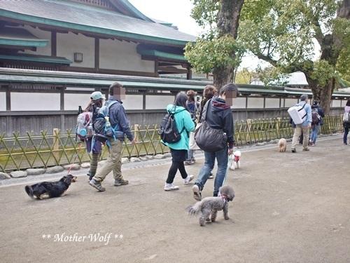 第24回マザーウルフ遠足 鎌倉天園レポート_e0191026_19485309.jpg