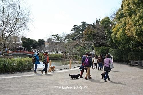 第24回マザーウルフ遠足 鎌倉天園レポート_e0191026_19540676.jpg