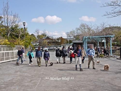 第24回マザーウルフ遠足 鎌倉天園レポート_e0191026_19544517.jpg