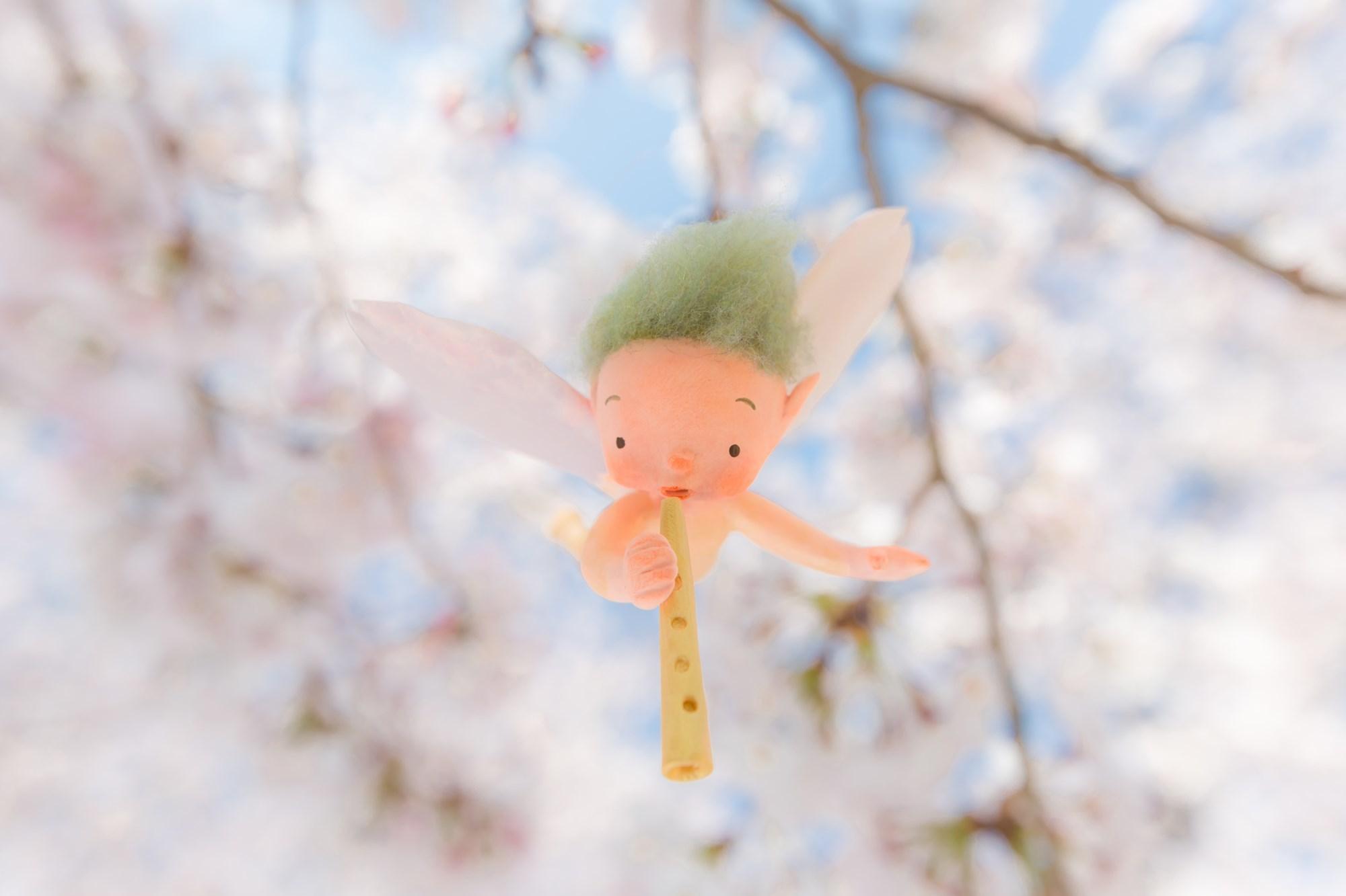 桜の妖精たち_f0395434_20344877.jpg