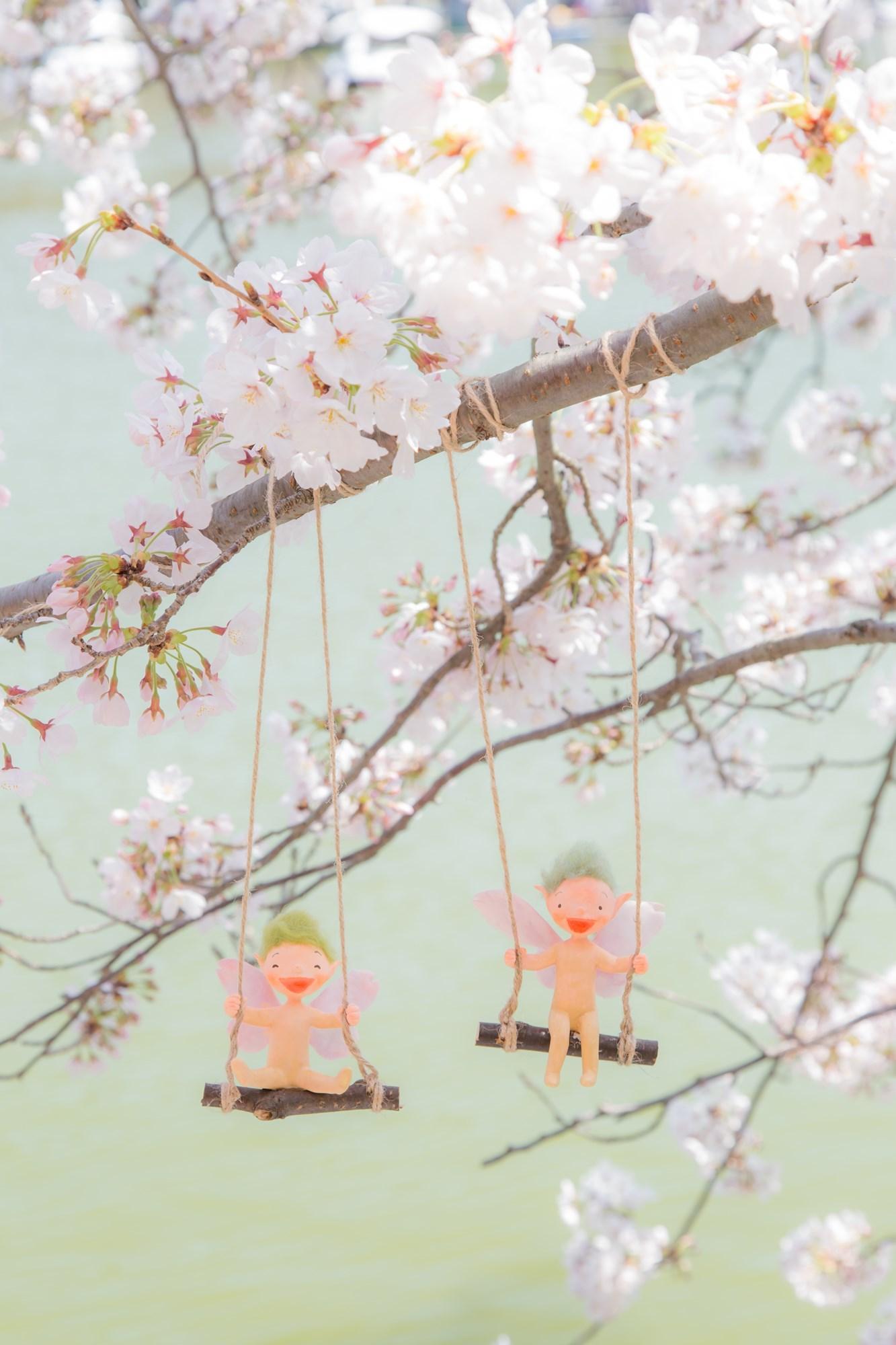 桜の妖精たち_f0395434_20345262.jpg