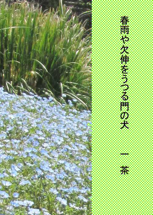 f0117041_06113803.jpg
