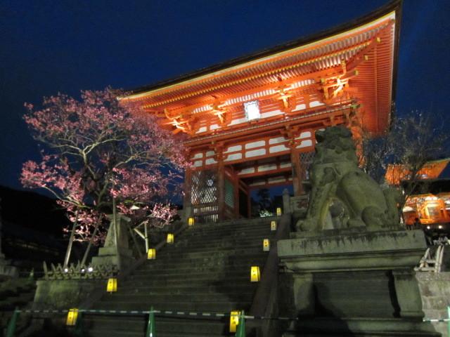 京都東山花灯路_f0200477_22251438.jpg