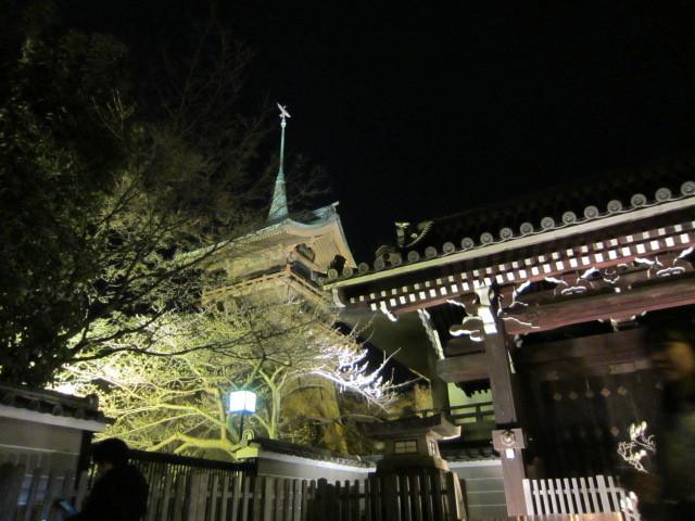 京都東山花灯路_f0200477_22274810.jpg