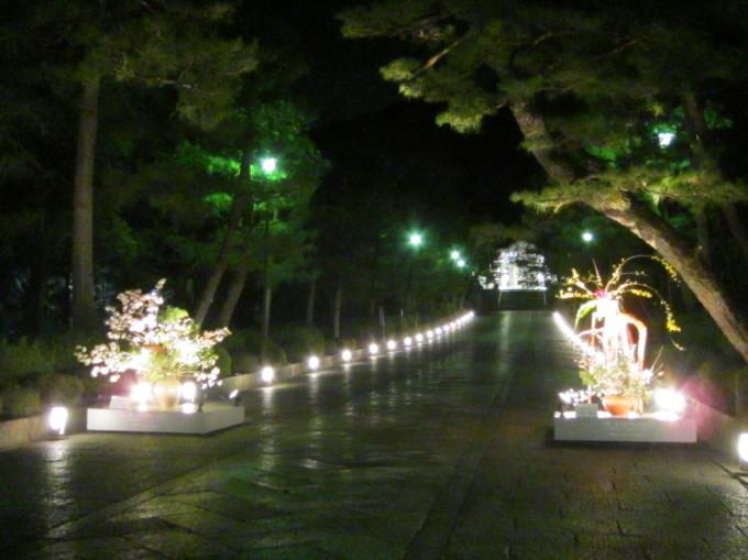 京都東山花灯路_f0200477_22280655.jpg