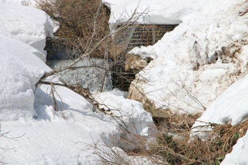 白川湖畔&飯豊山風景:春分・2, 2018.3.21_c0075701_17231991.jpg