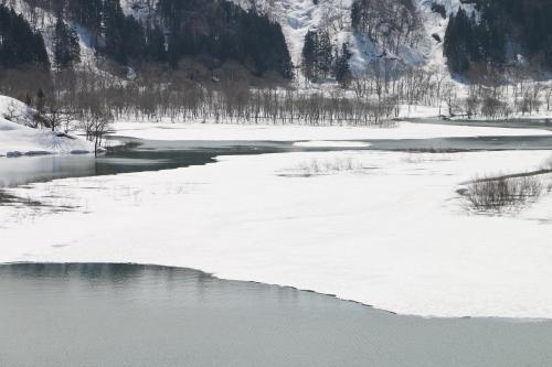 白川湖畔&飯豊山風景:春分・3, 2018.3.21_c0075701_17313961.jpg