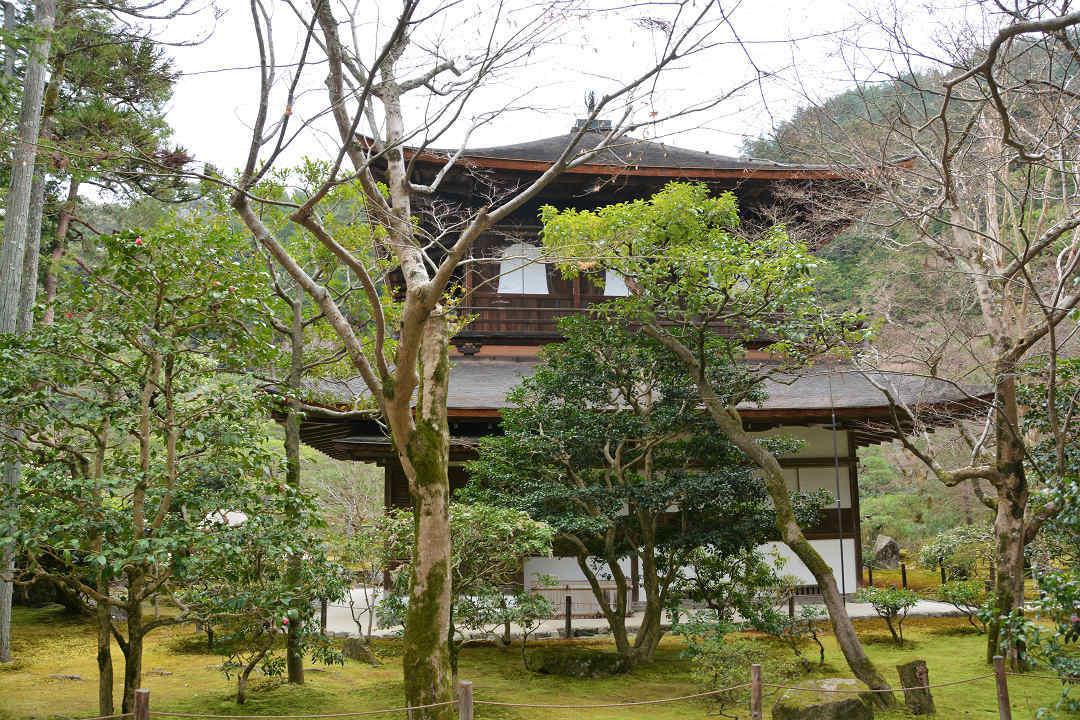 京都を歩く(6)銀閣寺から哲学の道を歩く_a0148206_09224122.jpg