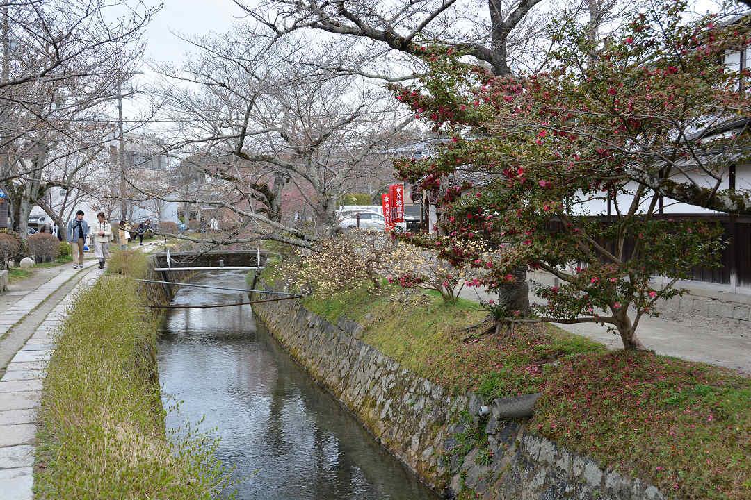 京都を歩く(6)銀閣寺から哲学の道を歩く_a0148206_09422178.jpg