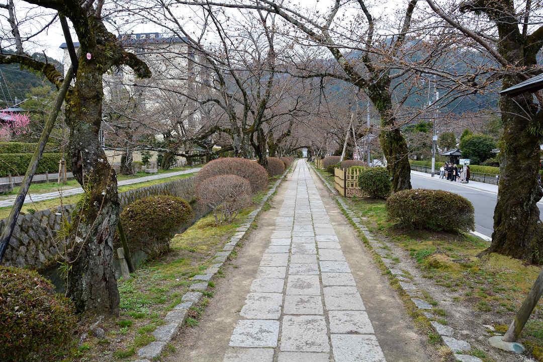 京都を歩く(6)銀閣寺から哲学の道を歩く_a0148206_09425822.jpg