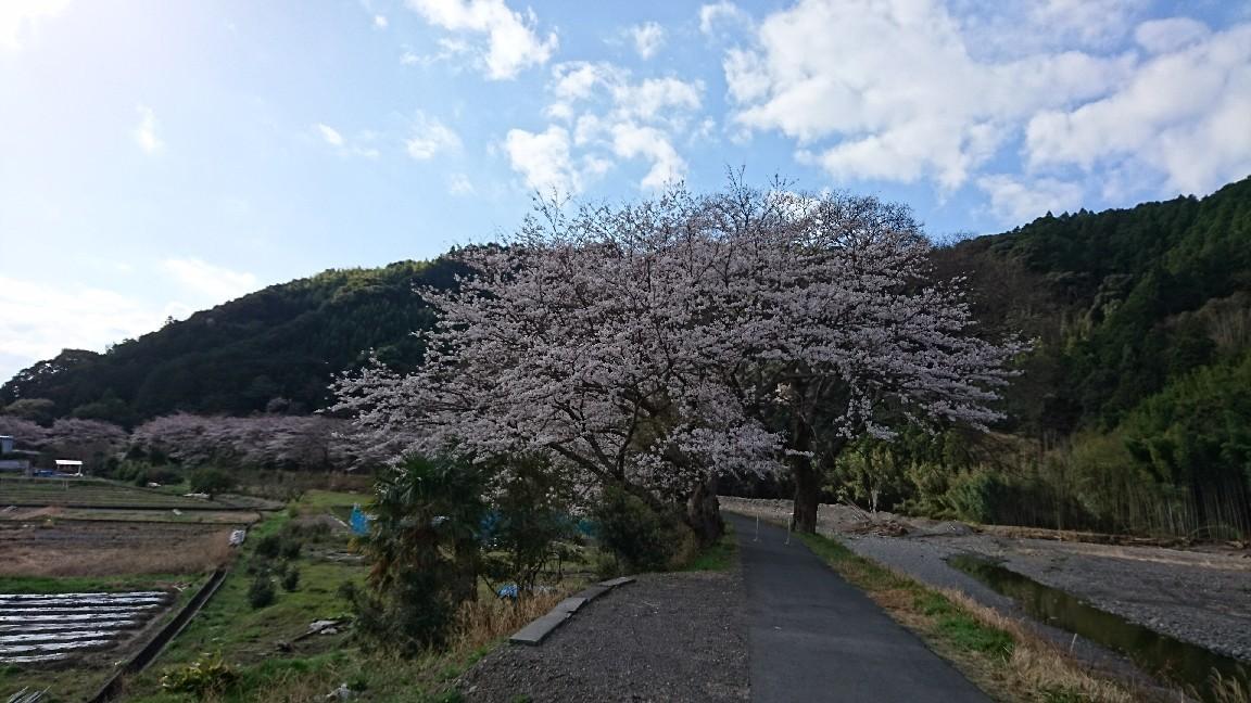 朝マック持って瀬戸川へ♪_b0093515_23180348.jpg