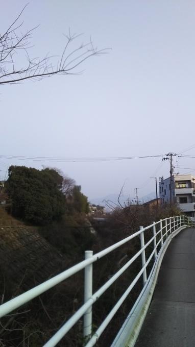 本格的な春爛漫へ_e0094315_07093427.jpg