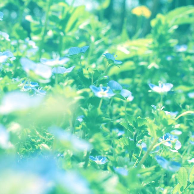 水色の野望_a0329820_15190320.jpg