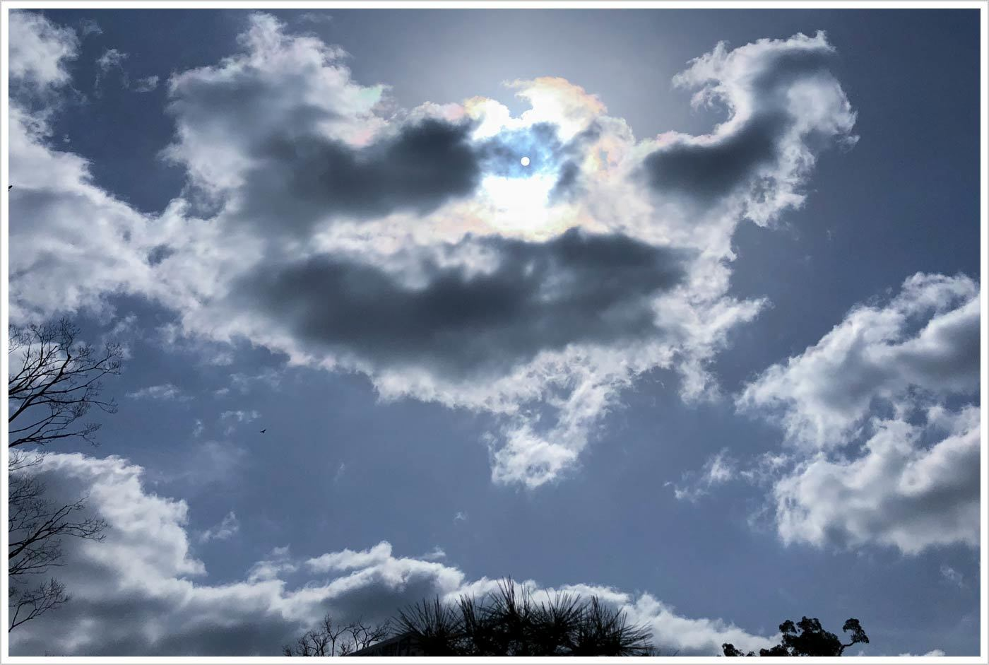 ようやく晴れて_d0104052_19585832.jpg