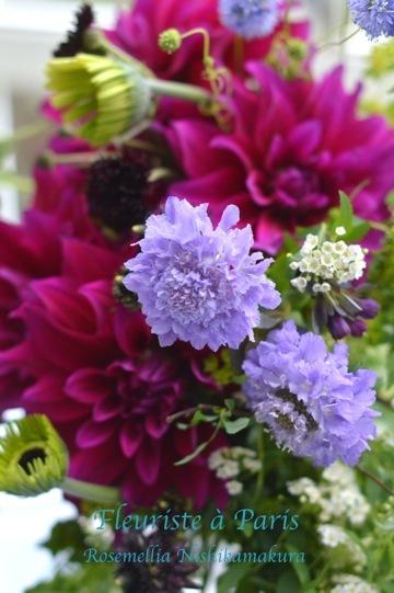 先週の素敵なお花たち_d0078355_14424105.jpg
