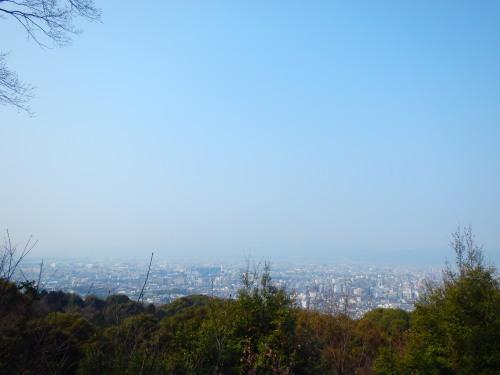 桜の開花情報ライド_a0345079_17114827.jpg