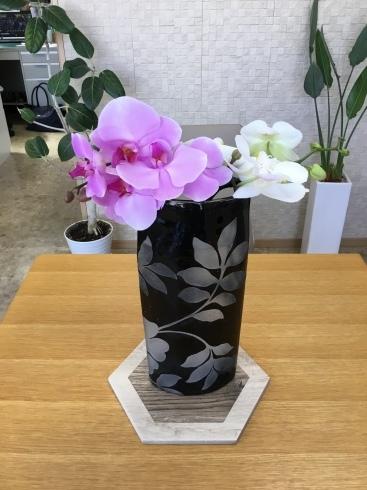 おもてなしのお花たち_e0190287_13003440.jpg