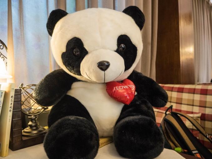 2018重慶・成都・パンダvol.4~成都大熊猫繁育研究基地へ直行~_f0276498_21413847.jpg