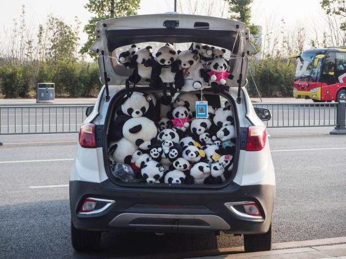 2018重慶・成都・パンダvol.4~成都大熊猫繁育研究基地へ直行~_f0276498_22182466.jpg