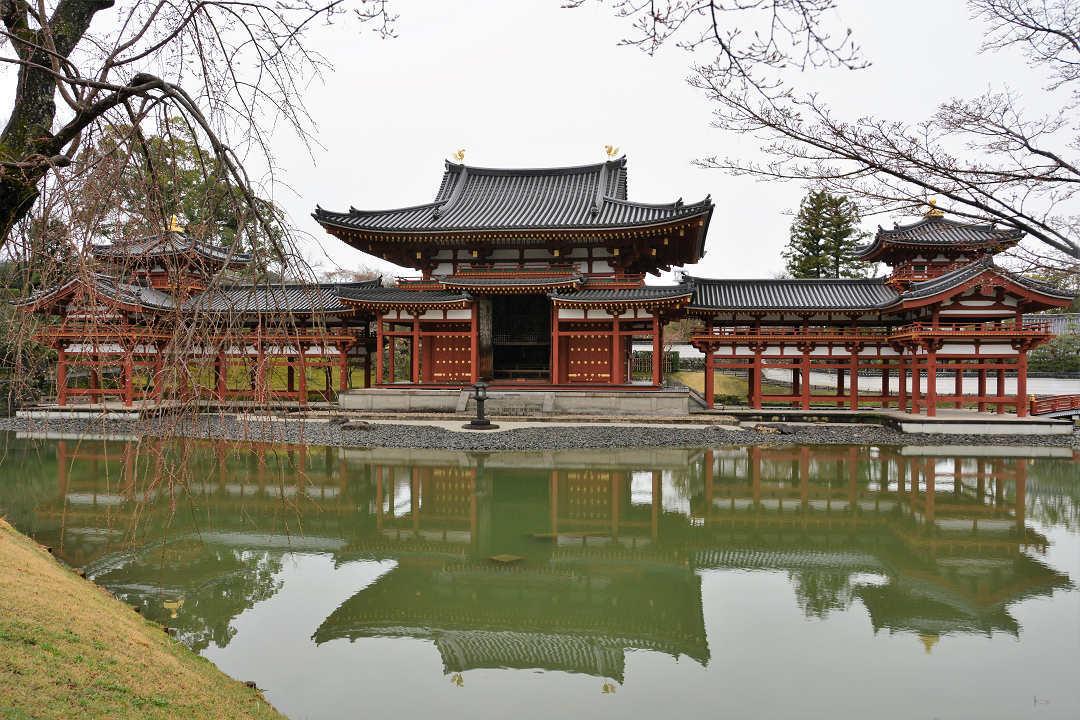 京都を歩く(10)宇治平等院_a0148206_20052551.jpg