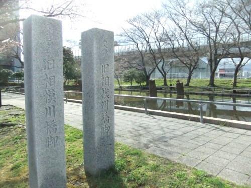 桜~桜...満開寸前..._b0137932_14401058.jpg