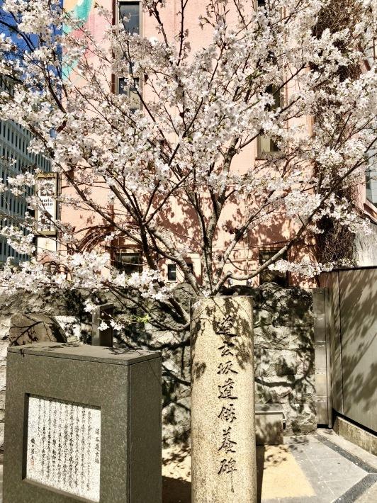 道玄坂の桜とレッスン@athenae_MA_a0103940_16393872.jpeg