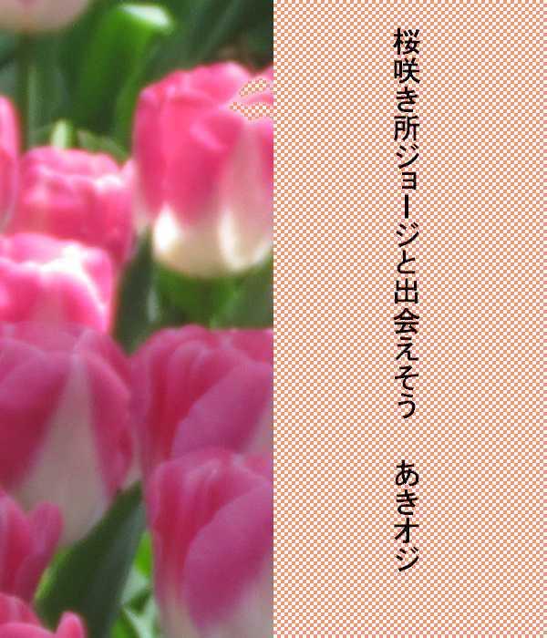 f0117041_04160588.jpg
