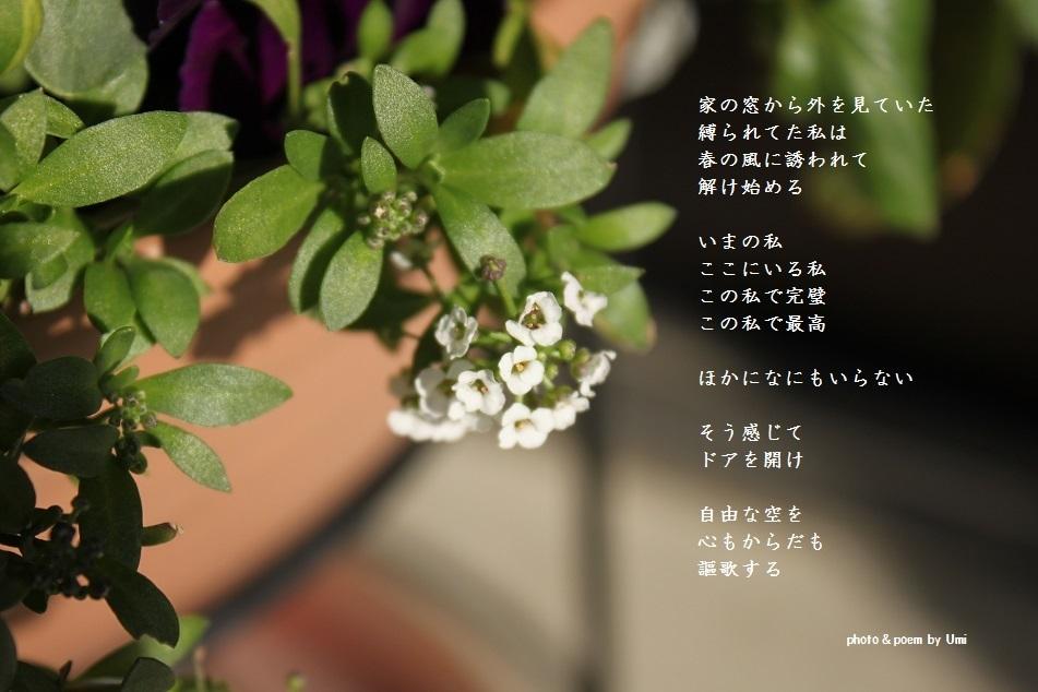 f0351844_16420819.jpg