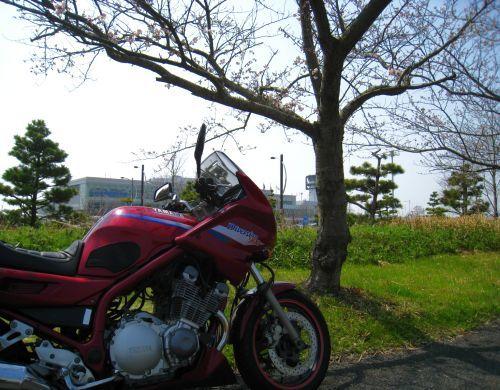 佐賀空港にて_b0170184_16480378.jpg