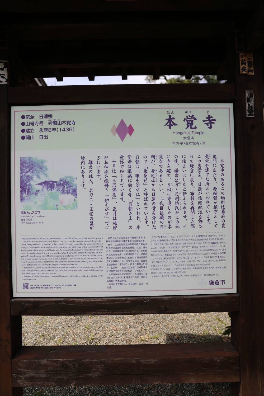 桜の季節_b0275998_15405859.jpg