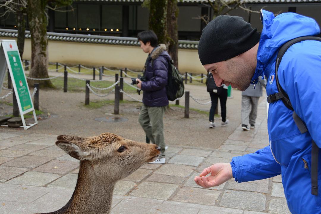 京都を歩く(11)奈良公園と東大寺_a0148206_06384126.jpg