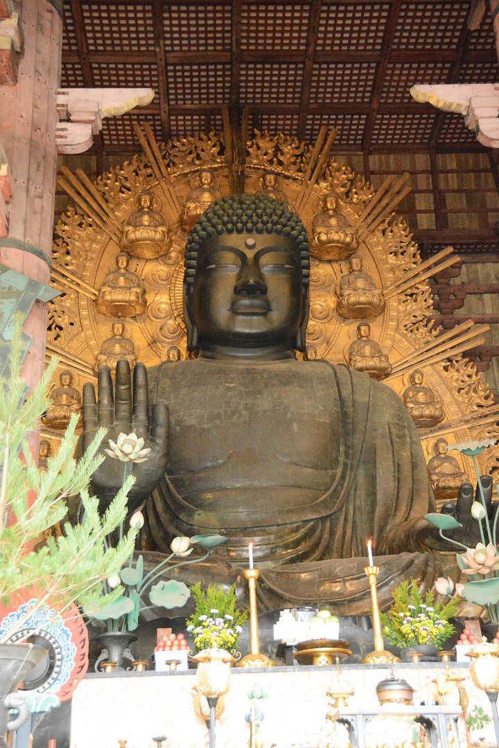 京都を歩く(11)奈良公園と東大寺_a0148206_06510231.jpg