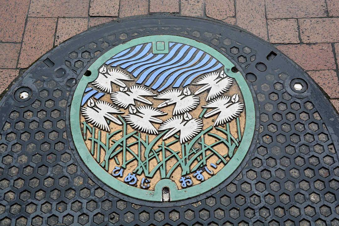 京都を歩く(13)姫路城へ_a0148206_19263350.jpg